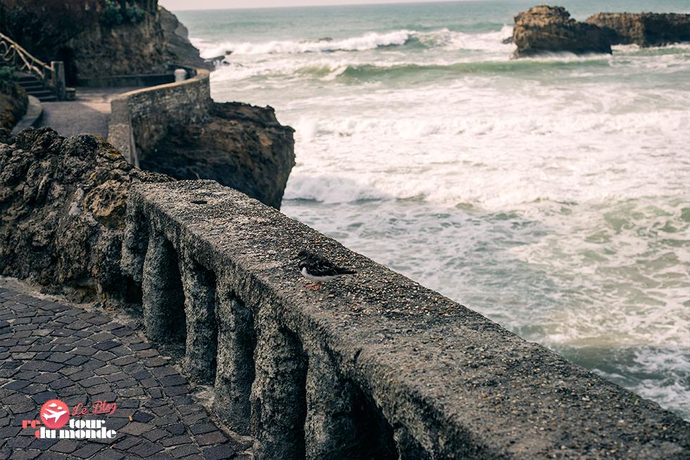 biarritz_rdm_8
