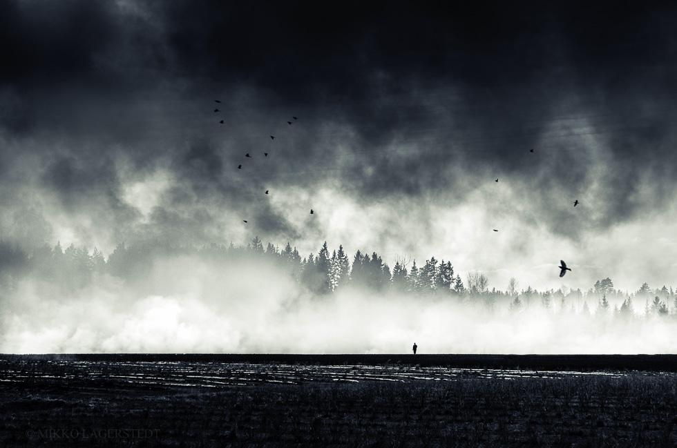 Mikko-Lagerstedt-Still-Standing